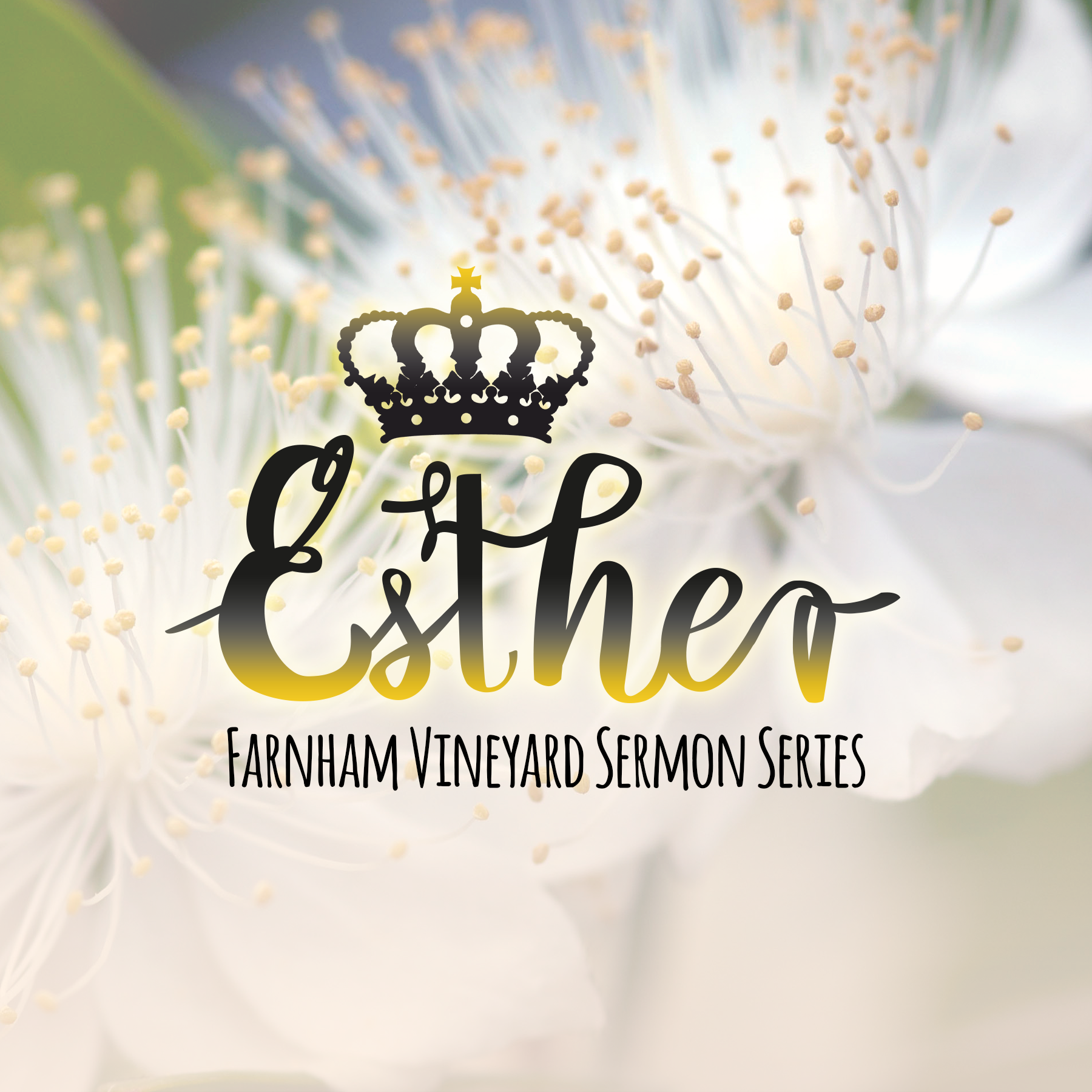 Esther 2 – Jesus: a better Saviour